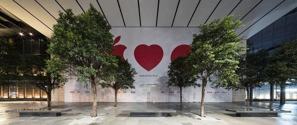 Apple_001_DSC7595