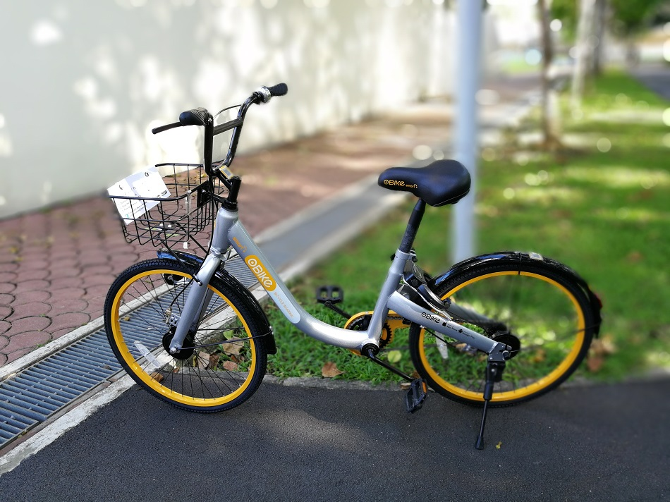 p10-bike-dof